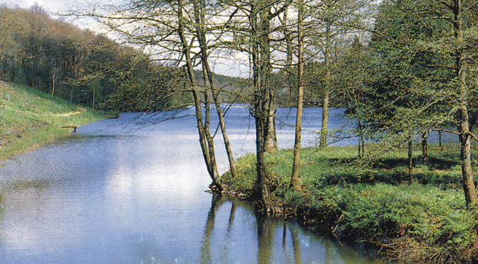 5 – Itinéraire des eaux et forêt de l'Ardenne