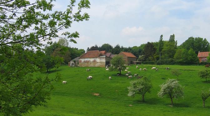 36 – Itinéraire des paysages ruraux à Braine-le-Comte